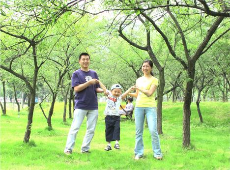 医院外的果树林